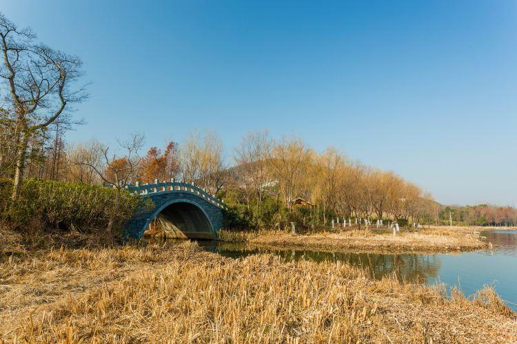 無錫長広渓国家湿地公園1