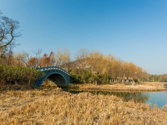 無錫長廣溪國家濕地公園