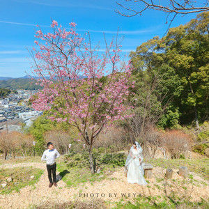 四国游记图文-面面呱呱带着婚纱游世界--再见樱花,三遇霓虹,四国阳光耀白纱