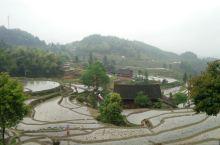 紫鹊界梯田,湄山地质公园游记