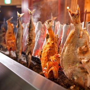 中央区游记图文-早晨捕获,晚上入口,最最新鲜的鱼市居酒屋,怎容错过?