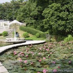 紫马岭公园旅游景点攻略图