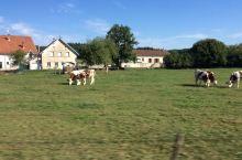 瑞士 田园风光