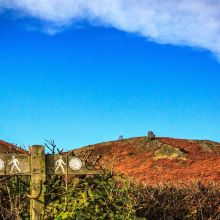 威尔士图片