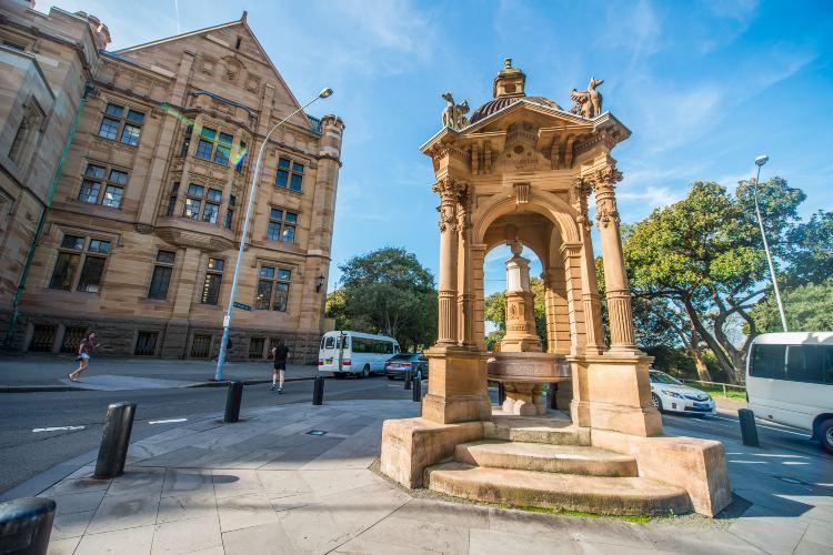 The Royal Botanic Garden Sydney2