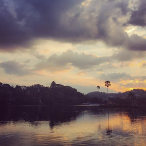 Pinnawela游记图文-斯里兰卡 - 灵魂与自由的栖息地