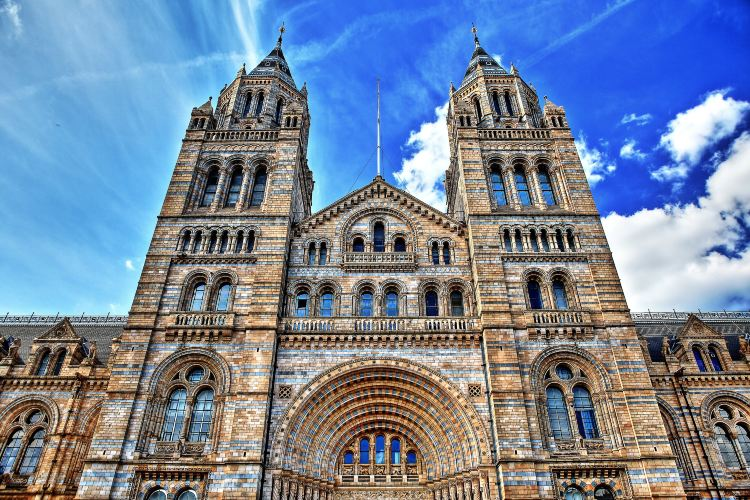 Natural History Museum1