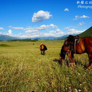 库车游记图文-间隔年之环游中国第四站——17天4000+公里北疆大环线