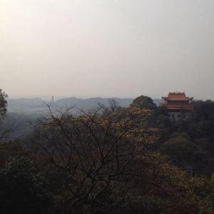 白鹿寺旅游景点攻略图
