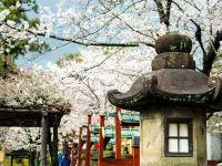 京 都 おこしやす(1)