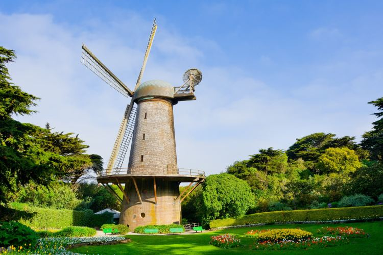 Golden Gate Park1