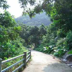 浮山岭风景区旅游景点攻略图
