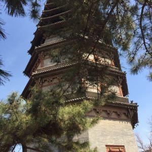 木塔旅游景点攻略图