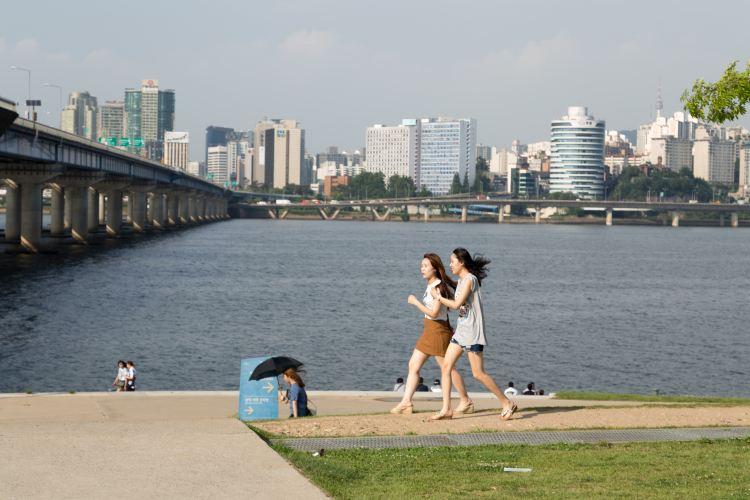 Youeido Han River Park3