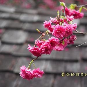 宜兰游记图文-台湾,我前世的故乡