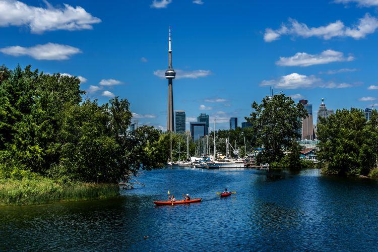 Toronto Waterfront2
