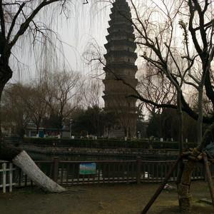蒙城游记图文-蒙城