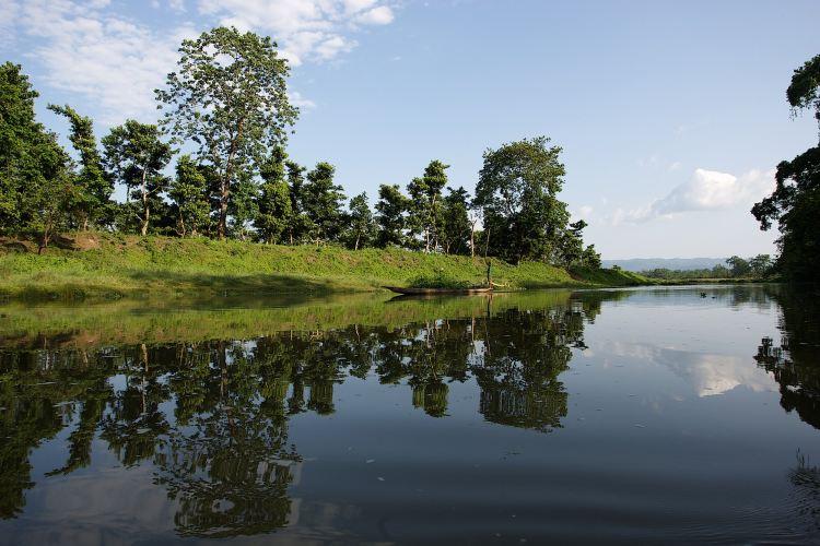 Chitwan National Park2
