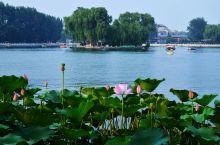 """<玩转 · 北京> l 穿过胡同就是海,""""后海""""街区游玩指南"""