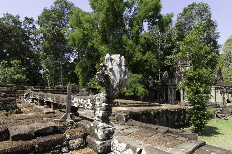 Terrace of the Elephants4