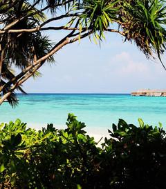 [马尔代夫游记图片] 水上水下的乐园 - 马尔代夫双岛游 W(2)