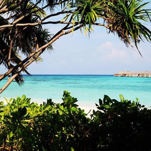 马尔代夫游记图文-水上水下的乐园 - 马尔代夫双岛游 W(2)