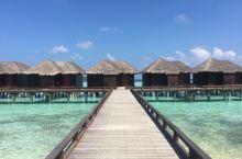 马尔代夫,美的不像话之满月岛蜜月游