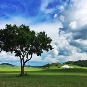 东乌旗游记图文-【海量原创美图】内蒙古自驾游,天堂草原在这里铺展