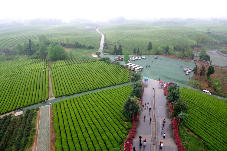 Chahai Scenic Area1