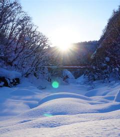 [北海道游记图片] 【Selina猫眼看世界】北海道的雪,日本的情书!