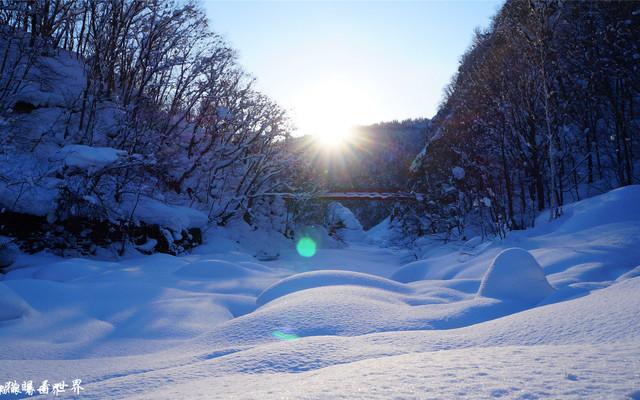 【Selina猫眼看世界】北海道的雪,日本的情书!