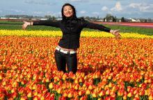 【Fiorelady】驶向心中的自由国度,荷兰!(库肯霍夫花园-羊角村-风车村-阿姆斯特丹)