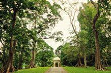 斯里兰卡康提-记OCIVA义工旅行 康提  这是一个舒适而慢节奏的城市。  她依山而建,绿意葱翠,地