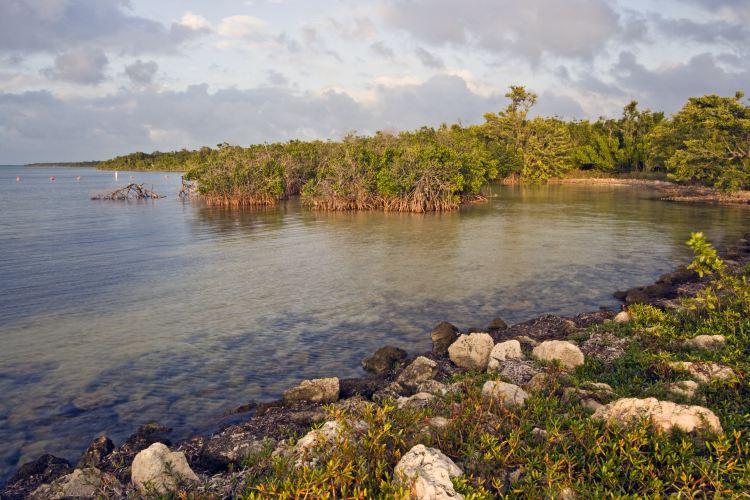 Biscayne National Park1