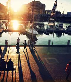 [悉尼游记图片] +我拍过悉尼,墨尔本,大堡礁,卧龙岗,堪培拉,皇后镇,新加坡,内蒙古,陕西,黄山,宁波