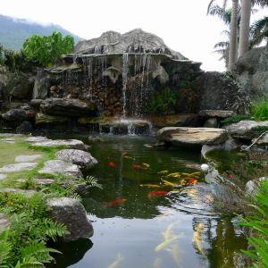花莲石雕博物馆旅游景点攻略图