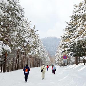 通化游记图文-想念吉林冬季的美(三角龙湾&鹿角沟)