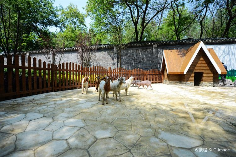 Zhuyuwan Scenic Spot4