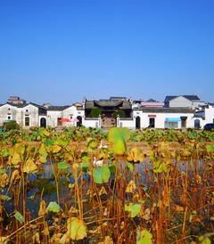 [衢州游记图片] 【行程大师赛 】金秋十月浙江衢州的世外仙境