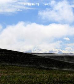 [额尔古纳游记图片] 心往北飞——呼伦贝尔大兴安岭