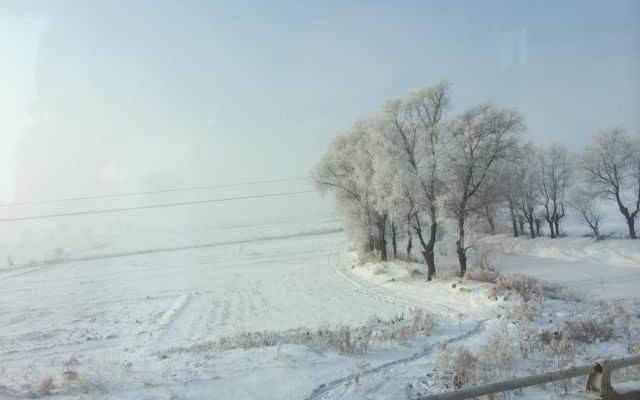 2013年一个人的哈尔滨之旅