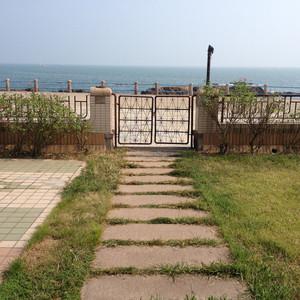 东营游记图文-吃货的3日旅行-青岛