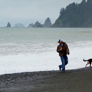 西雅图游记图文-美国西北部24日自驾游--奥林匹克公园