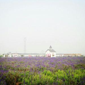 紫海香田薰衣草庄园旅游景点攻略图