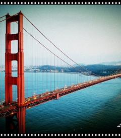 [旧金山游记图片] 精彩在路上——美国西海岸18日自驾游之旧金山