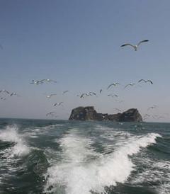 [长岛游记图片] 春末夏初长岛、龙口南岛休闲自助游