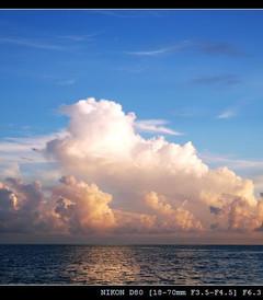 [绚丽岛游记图片] 马尔代夫绚丽岛游记+浮潜(大海龟,还有鱼群)