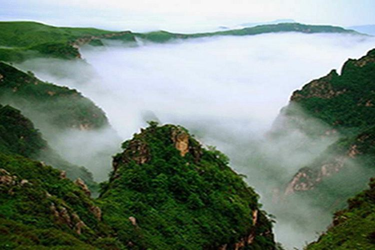 Feihu Valley · Grassland in the Sky4