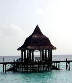 [蓝色美人蕉岛游记图片] 马尔代夫蓝色美人蕉岛最新自助游攻略+游记(附海量图