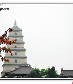 [西安游记图片] 【看中国旅游】第二站:西安(11天行程,360张美图)